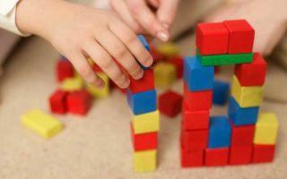 Что включают в себя развивающие занятия для детей?